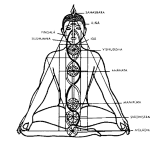 El origen del yoga en la India