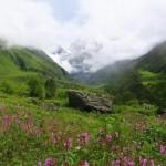 India y el camino del Valle de las Flores