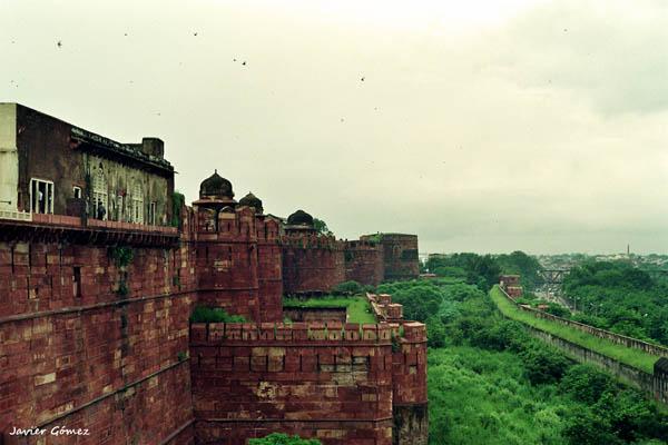Fuerte Rojo de Agra 1