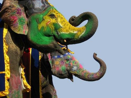 Festival del Elefante de Jaipur