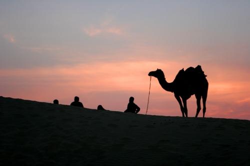 Desierto en Jaisalmer