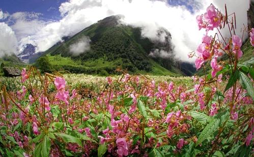 El Valle de las Flores y la montaña Nanda Devi