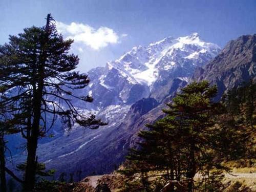 Valle yumthang
