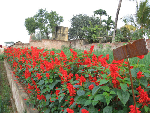 Malda, puerta de entrada al norte de Bengala