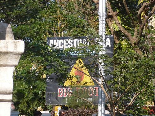 Goa Ancestral