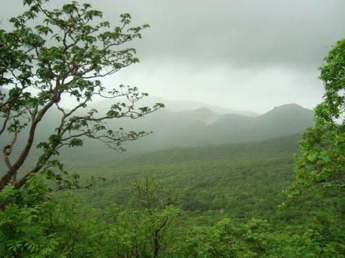 Parque Nacional Gir