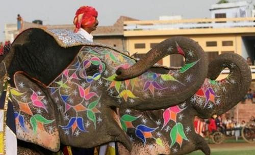 Festival del Elefante